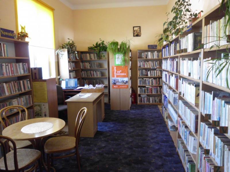 biblioteka kozlowka