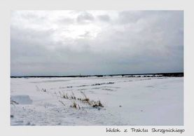 Gmina Głusk w zimowej szacie – galeria