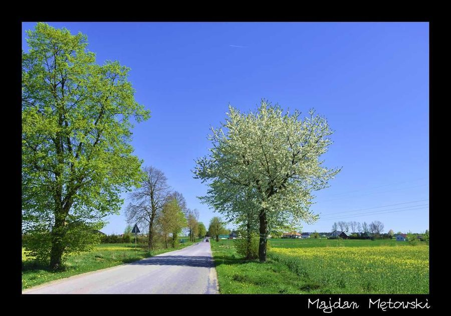 Krajobraz Majdan Mętowski