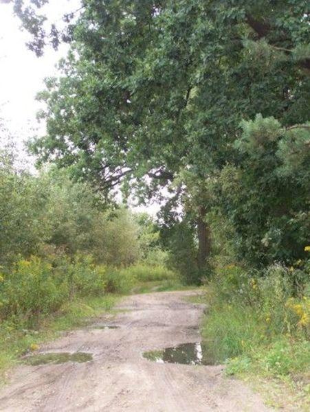 Przejażdżka po północnej stronie Gminy Markuszów