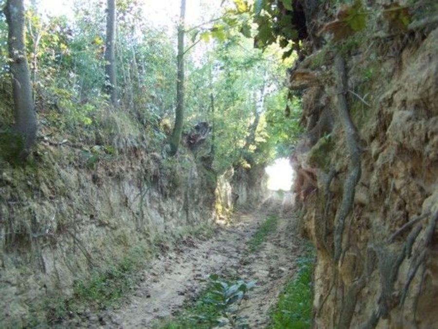 Przejażdżka po południowej stronie Gminy Markuszów