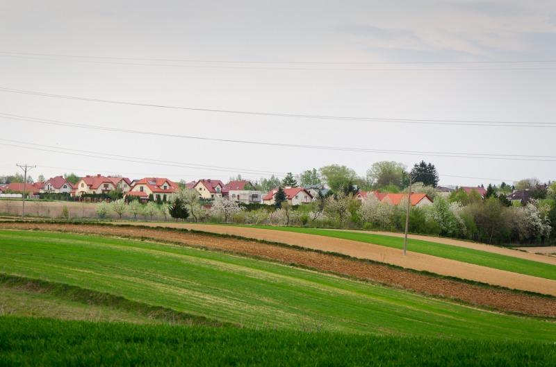 Elizówka