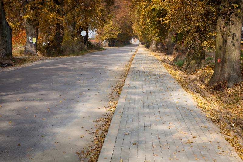 Budowa chodnika w ciągu drogi powiatowej nr 1546 L w m. Pólko na dł. 1200 m