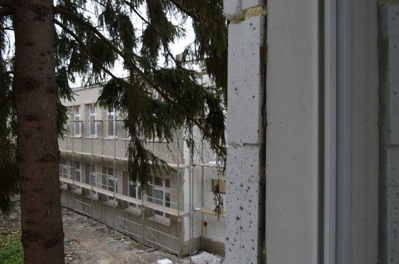 Drzewo na tle budynku w remoncie