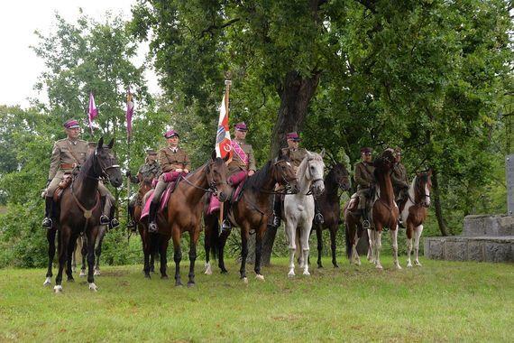 Zdjęcie żołnierzy na koniach