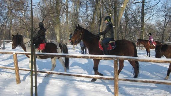 Zima w Powiecie Puławskim - Kębło