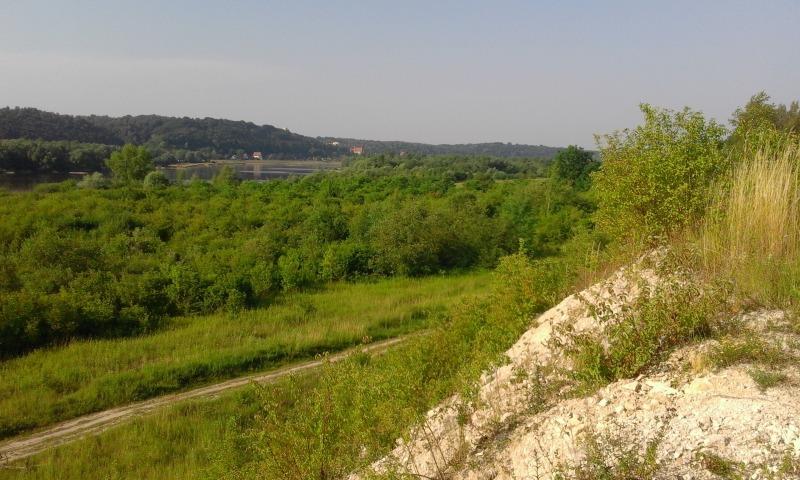 Zielonym szlakiem do Janowca