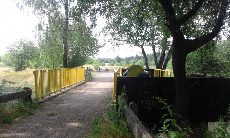 Niebieskim szlakiem do Gołębia