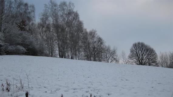 Zima, zima, zima ...