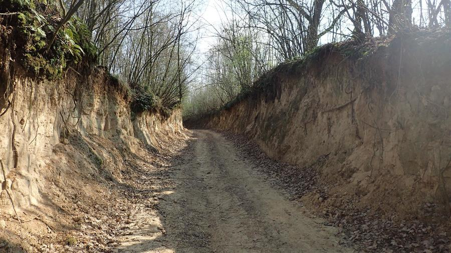 Wiosenne szlaki po Powiecie Puławskim