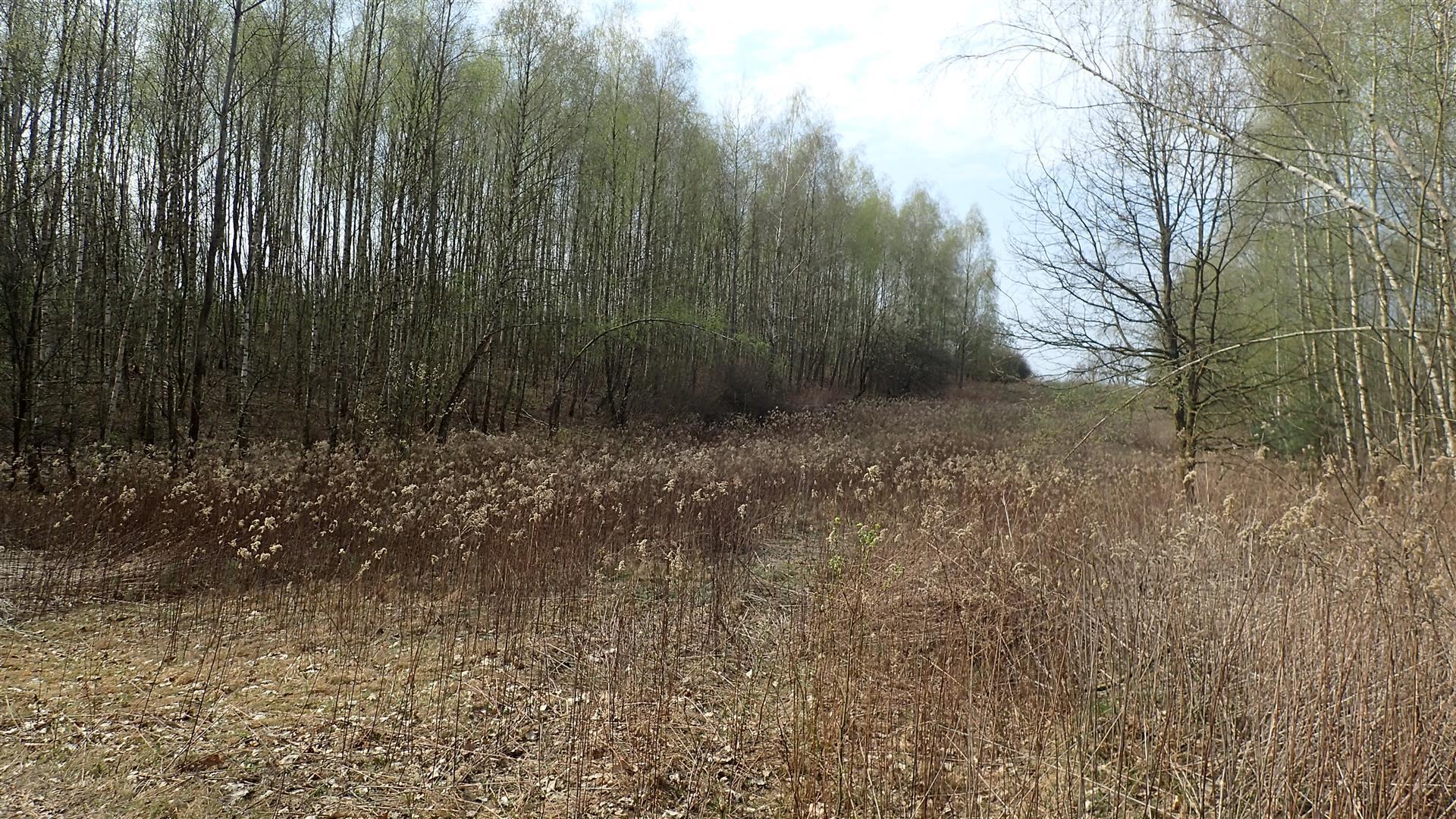 Wiosennych szlaków po Powiecie Puławskim ciąg dalszy