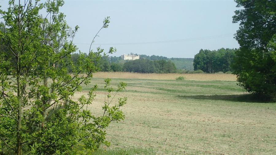 <p>Widok z trasy na janowiecki zamek</p>
