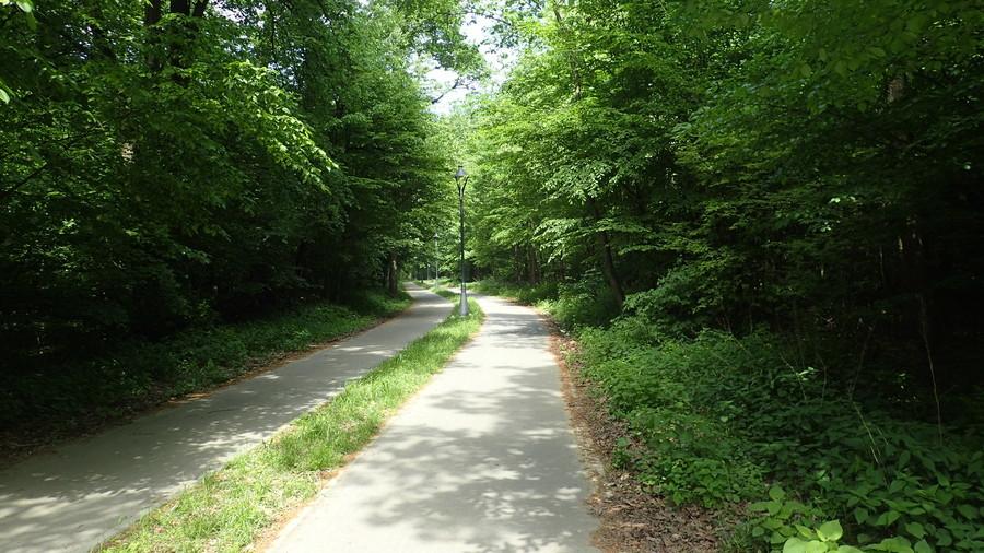 <p>Ścieżka rowerowa od ul. Prusa w Puławach</p>
