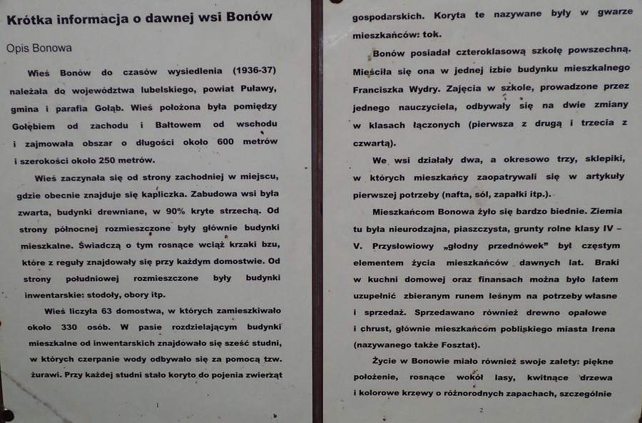 <p>Historia Bonowa</p>
