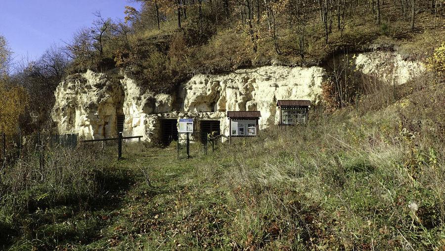 Wąwozami z Puław do Kazimierza Dolnego