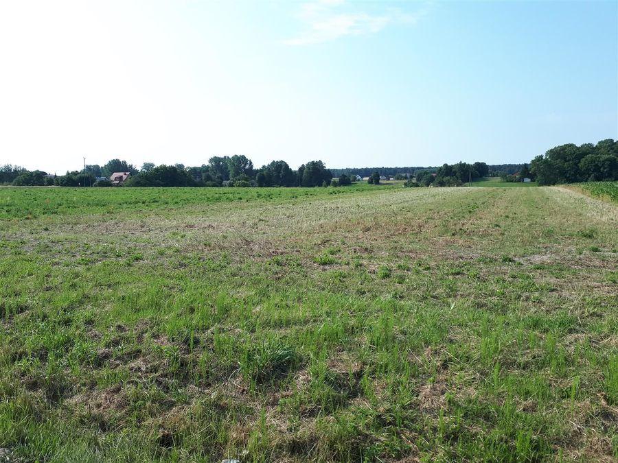 Przetargi na sprzedaż własności niezabudowanych działek w Żyrzynie