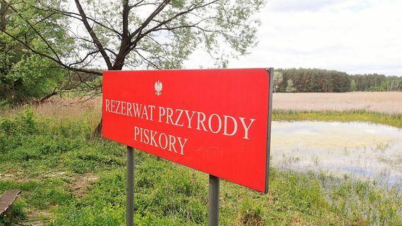 Rowerem do rezerwatu Piskory przez Gołąb i Niebrzegów