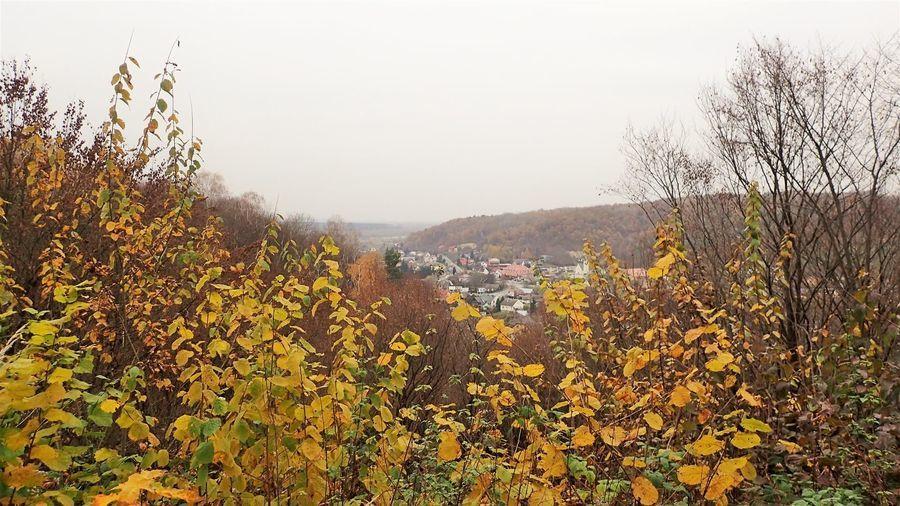 Widok na Bochotnicę ze wzgórza