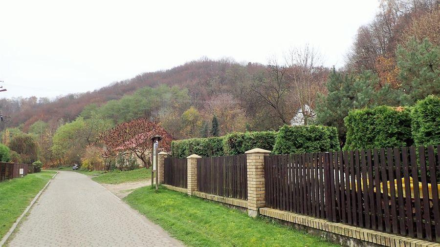 Bochotnica - dojazd do ruin Zamku Esterki