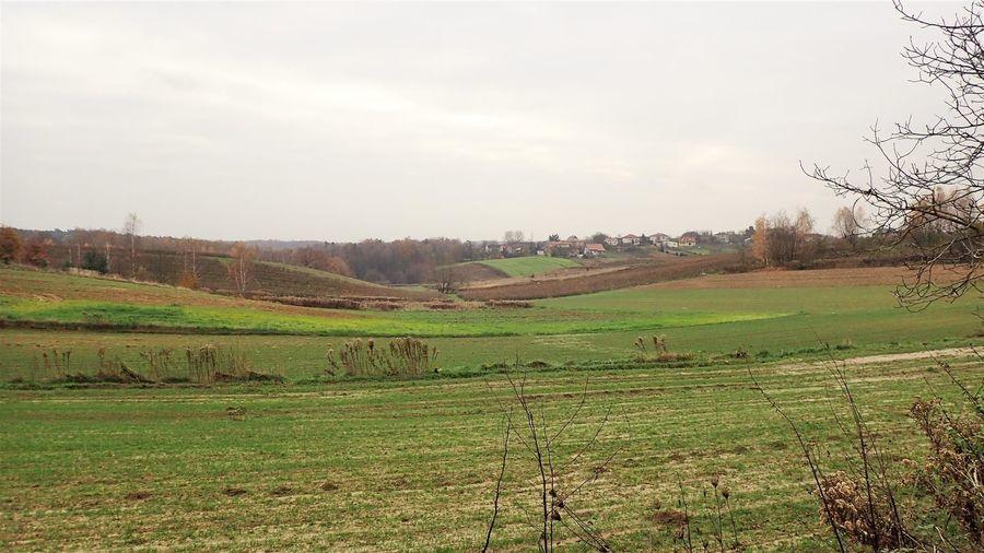 Panorama Zbędowic