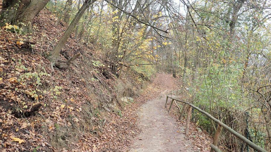 Ścieżka na Górę Trzech Krzyży w Kazimierzu Dolnym