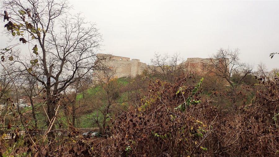 Ruiny kazimierskiego zamku
