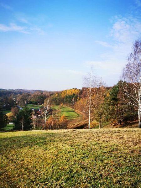 Punkt widokowy w Witoszynie