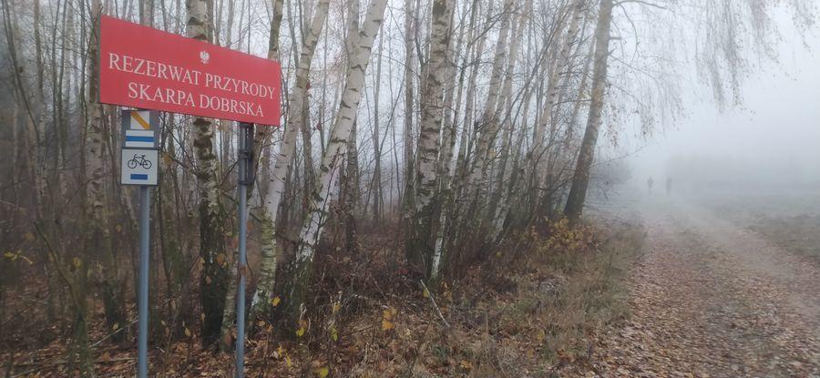 Rezerwat Skarpa Dobrska