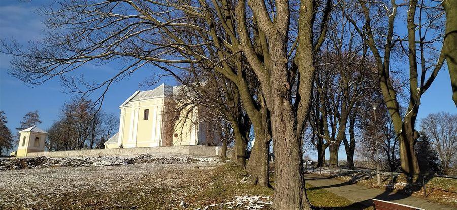 Kościół św. Wojciecha w Górze Puławskiej