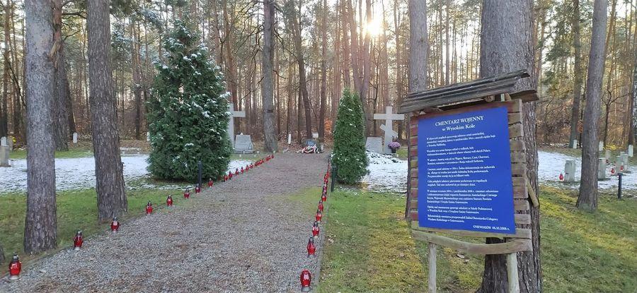 Cmentarz wojenny w Wysokim Kole