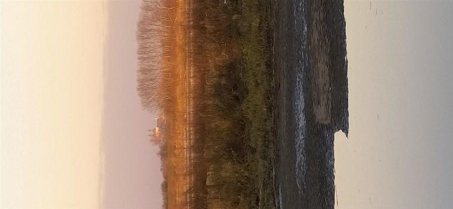 Kościół w Gołebiu - widok z zachodniego brzegu Wisły