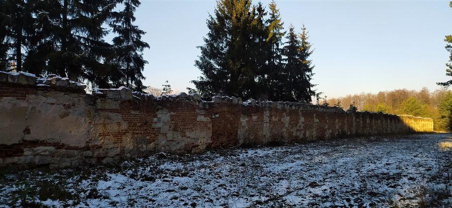 Mur klasztorny w Wysokim Kole