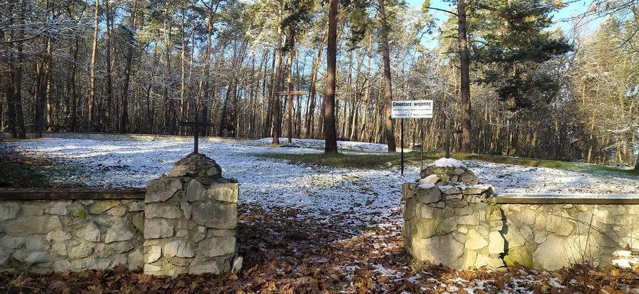 Cmentarz z I wojny światowej żołnierzy niemieckich i austro-węgierskich