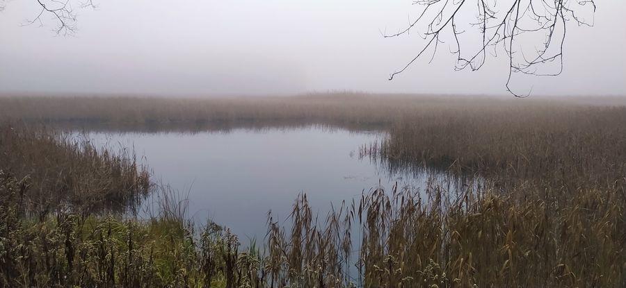 Jezioro Piskory