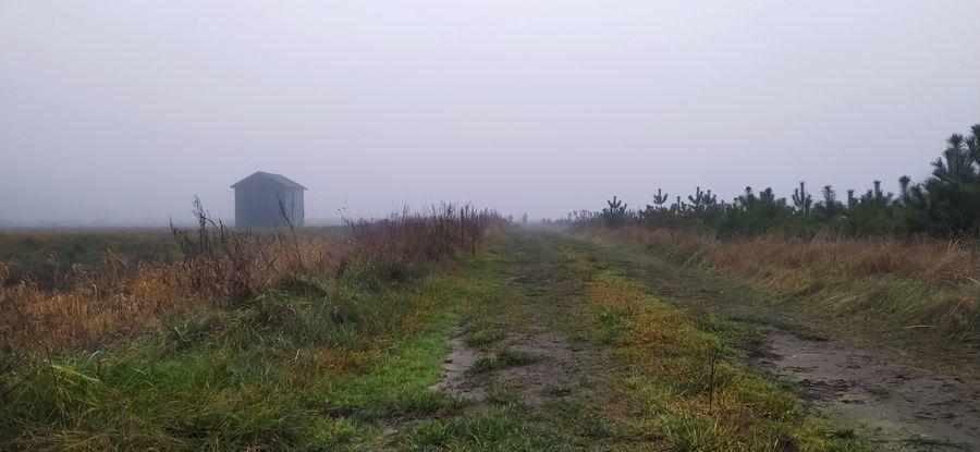 Łąki Bałtowskie