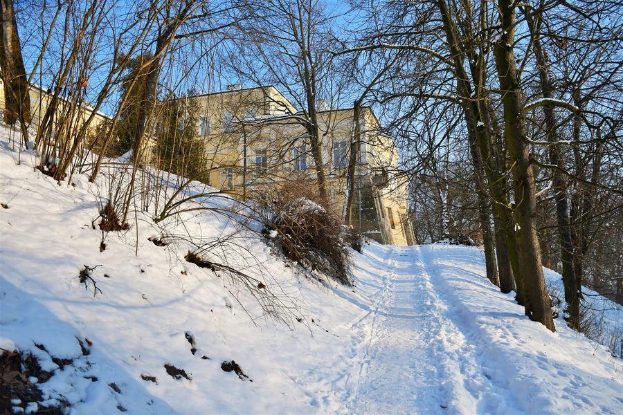 Pałac Czartoryskich