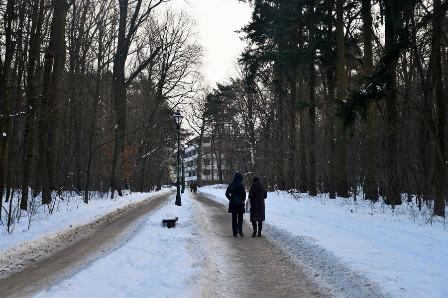 Miasto Puławy