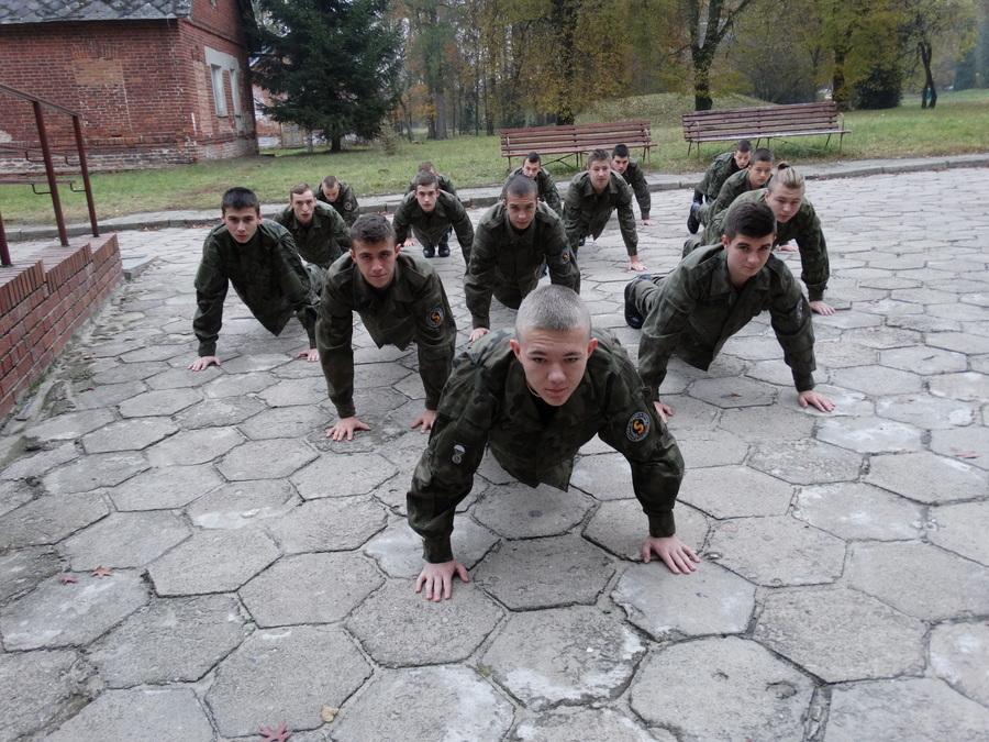 http://sobieszynbrzozowa.pl/