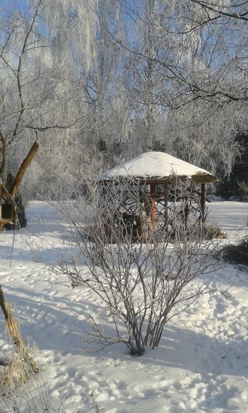 Ogród p. Renata Gos