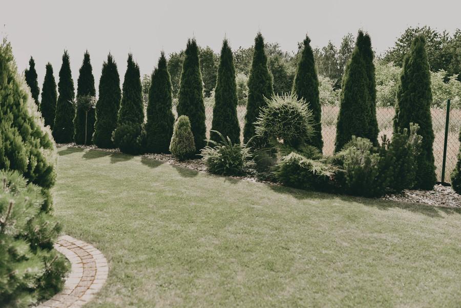 Ogród p. Marek Pastuszka