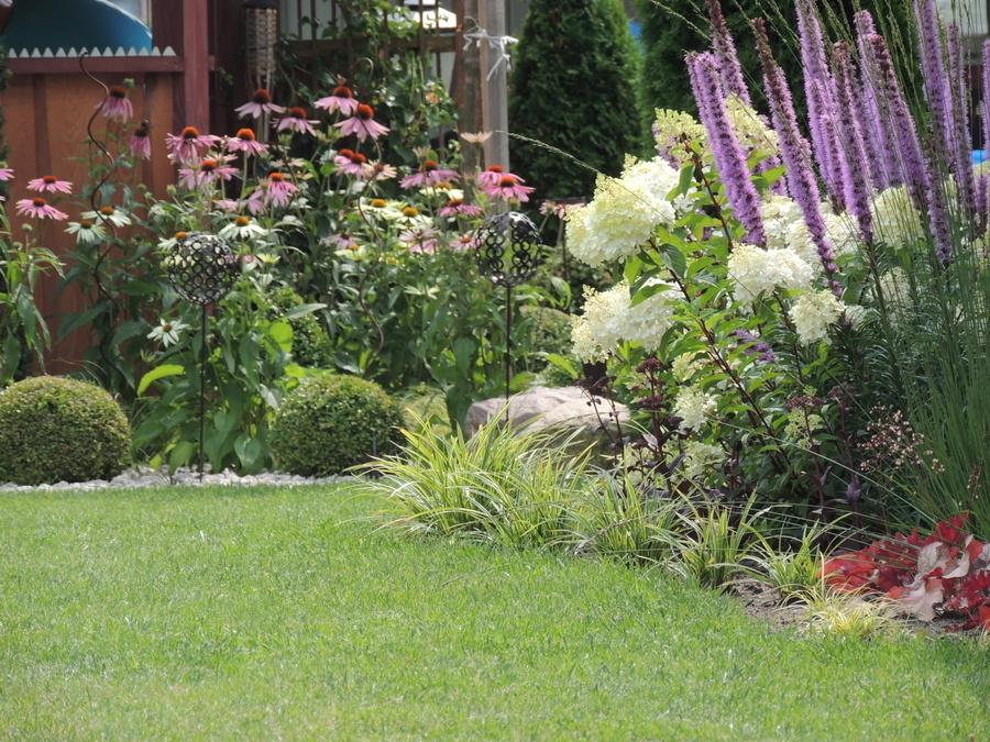 Ogród p. Karolina Wolska