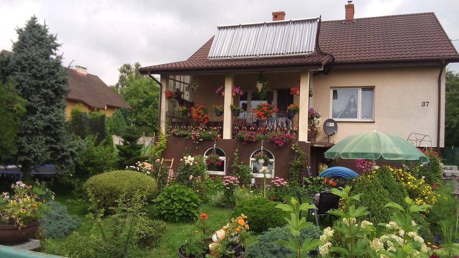 Ogród p. Iwona Kozłowska
