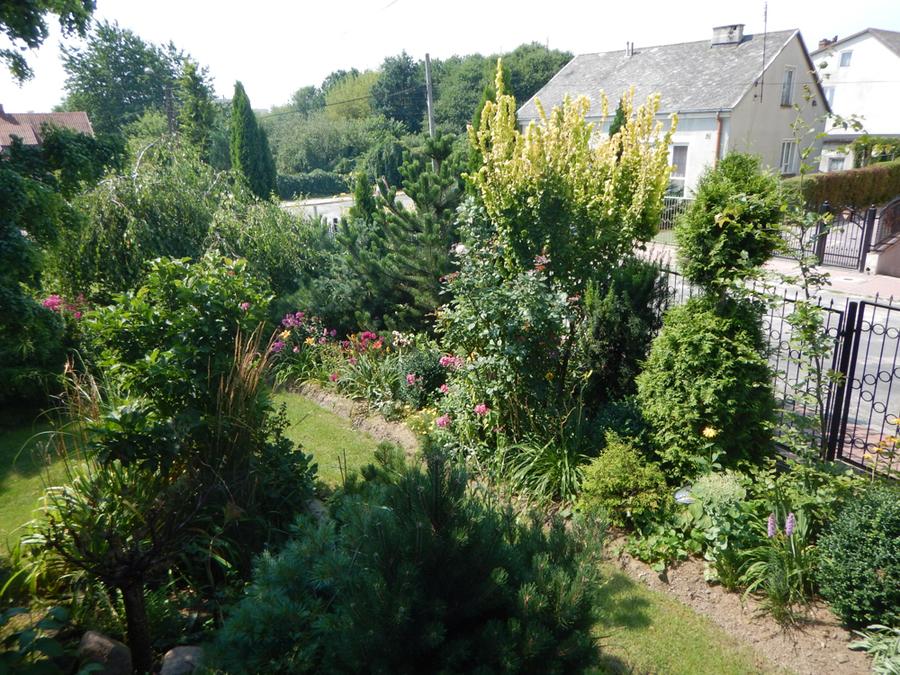 Ogród p. Halina Kornas