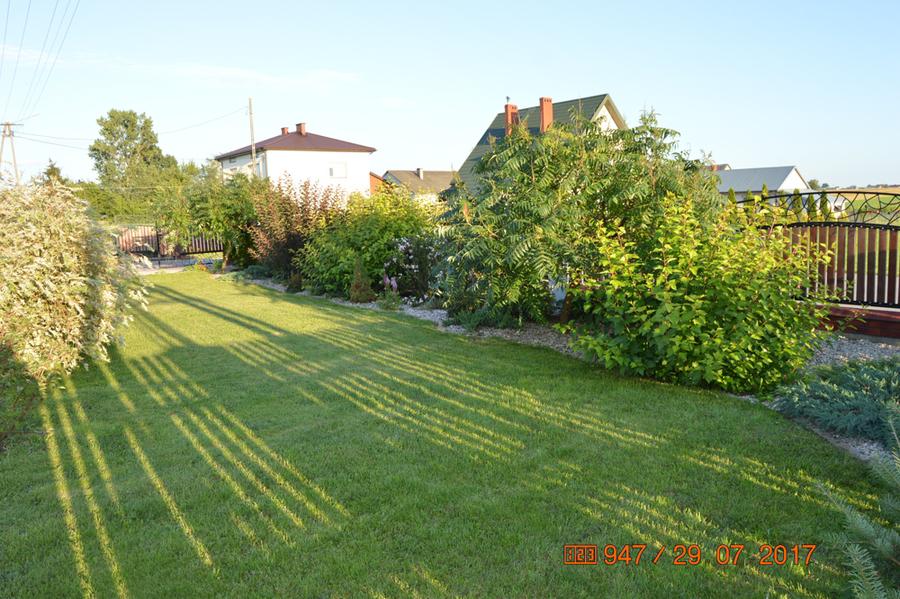 Ogród p. Elżbieta Sadrzak