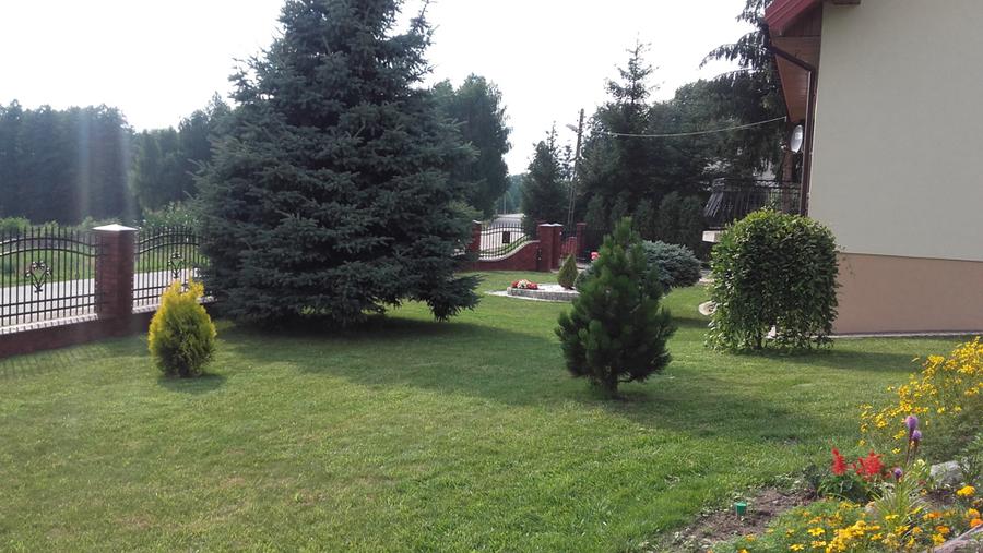 Ogród p. Dorota Niebrzydowska