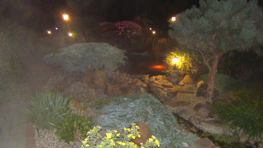 Ogród p. Mariola i  Dariusz Cenkiel
