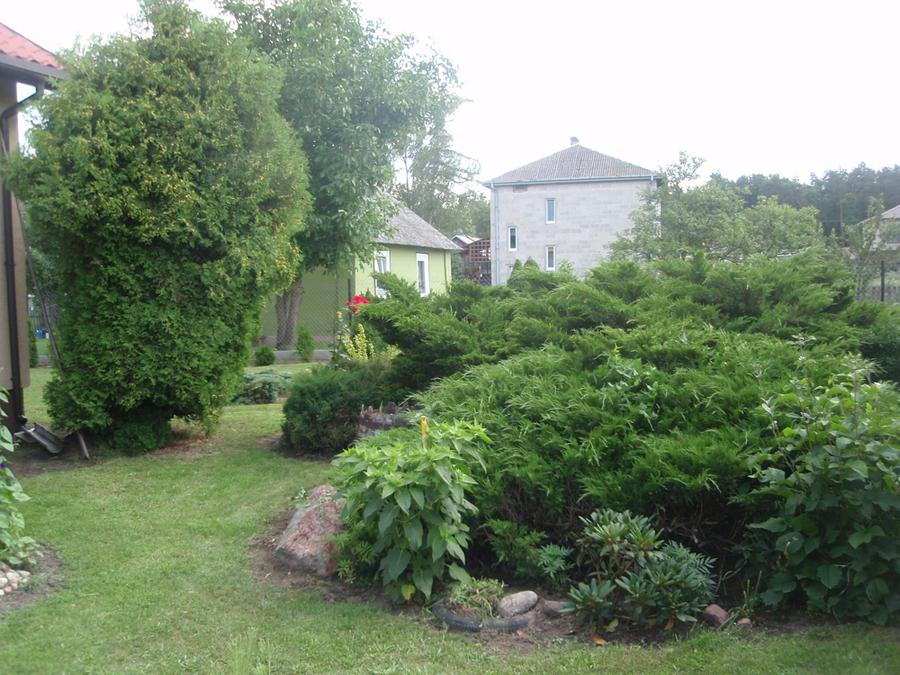Ogród p. Bożena Stachnio