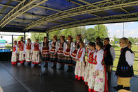 III Wojewódzka Wystawa Koni Ras Zimnokrwistych w Łuszczowie Drugim