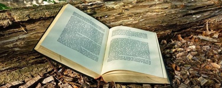 GMINNA BIBLIOTEKA PUBLICZNA, GIMNAZJUM IM.JANA PAWŁA II, URZĄD GMINY W ABRAMOWIE zapraszają na