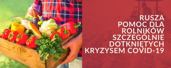 Kosz z warzywami + napis na bordowym tle  Rusza pomoc dla rolników szczególnie dotkniętych kryzysem COVID-19